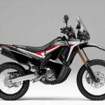 Honda CRF250 Rally 2019 2